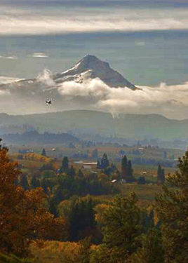 Mt. Hood towering over the Hood River Valley