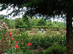 Heirloom Gardens