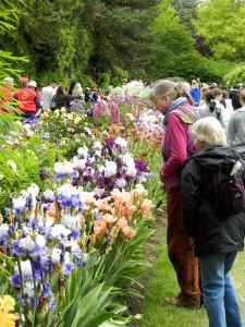 Memorial Day visitors at Schreiner 's Gardens; photo courtesy of Schreiner's Gardens.