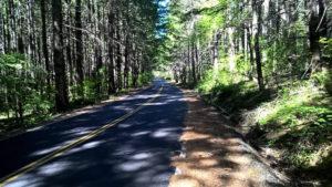 Along Tu's backroads bike route.